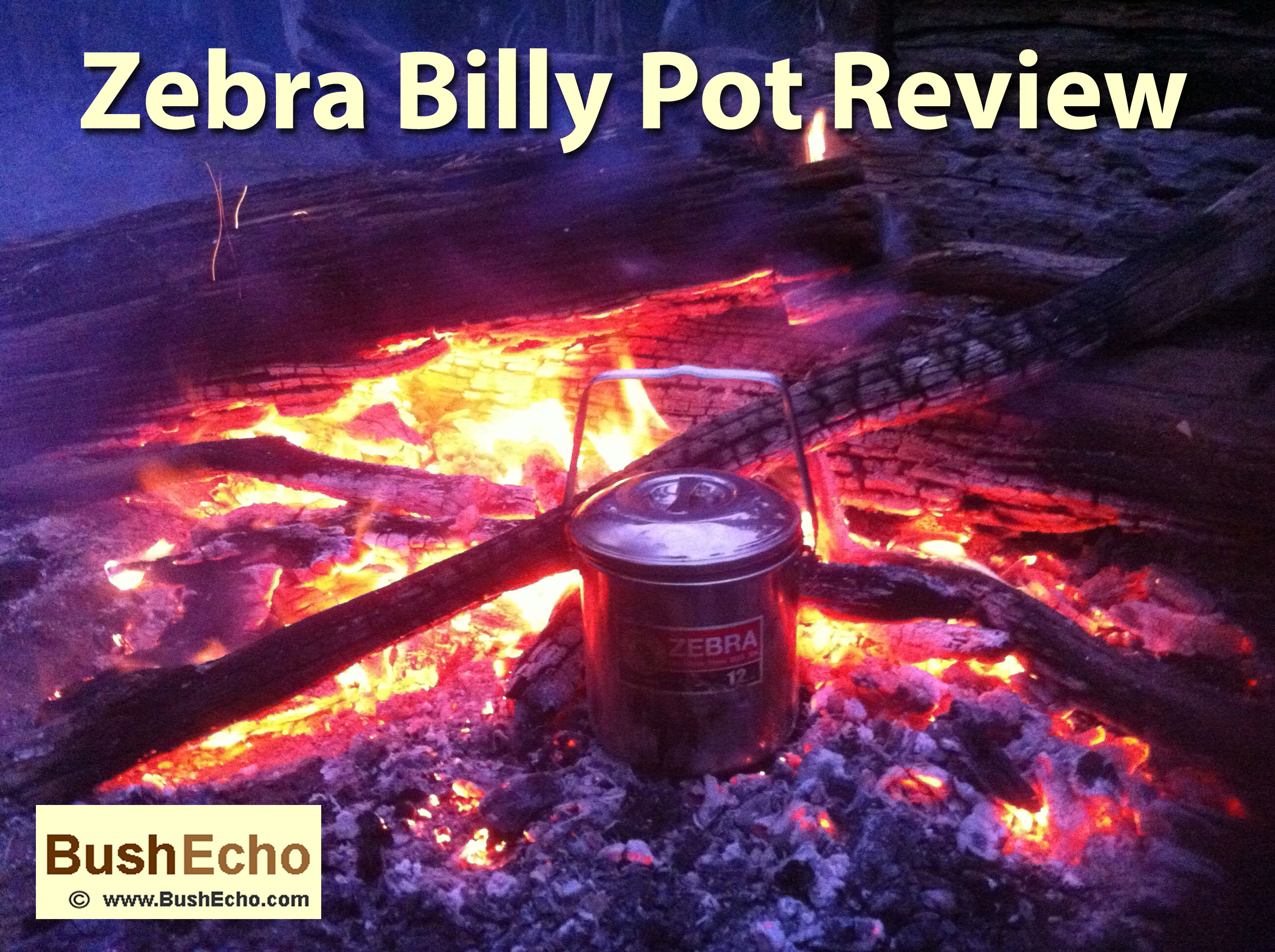 Zebra Billy Pot Review