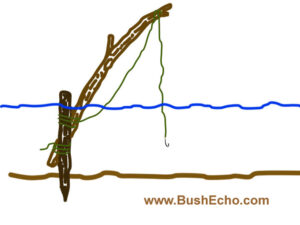 Bushcraft Limb Line