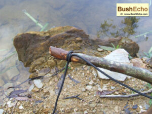 Bushcraft Survival Fishing