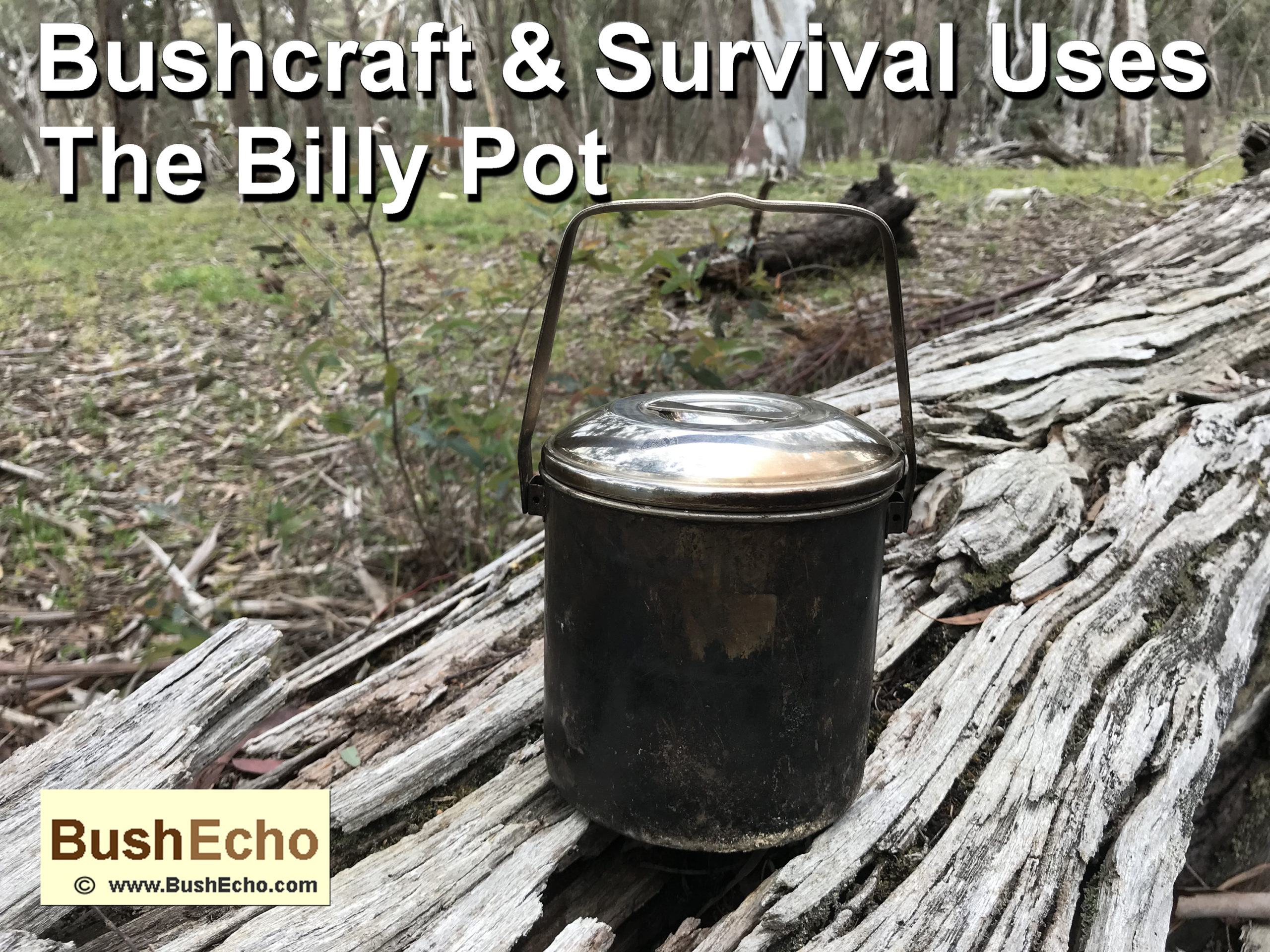 Bushcraft & Survival Uses Billy Pot