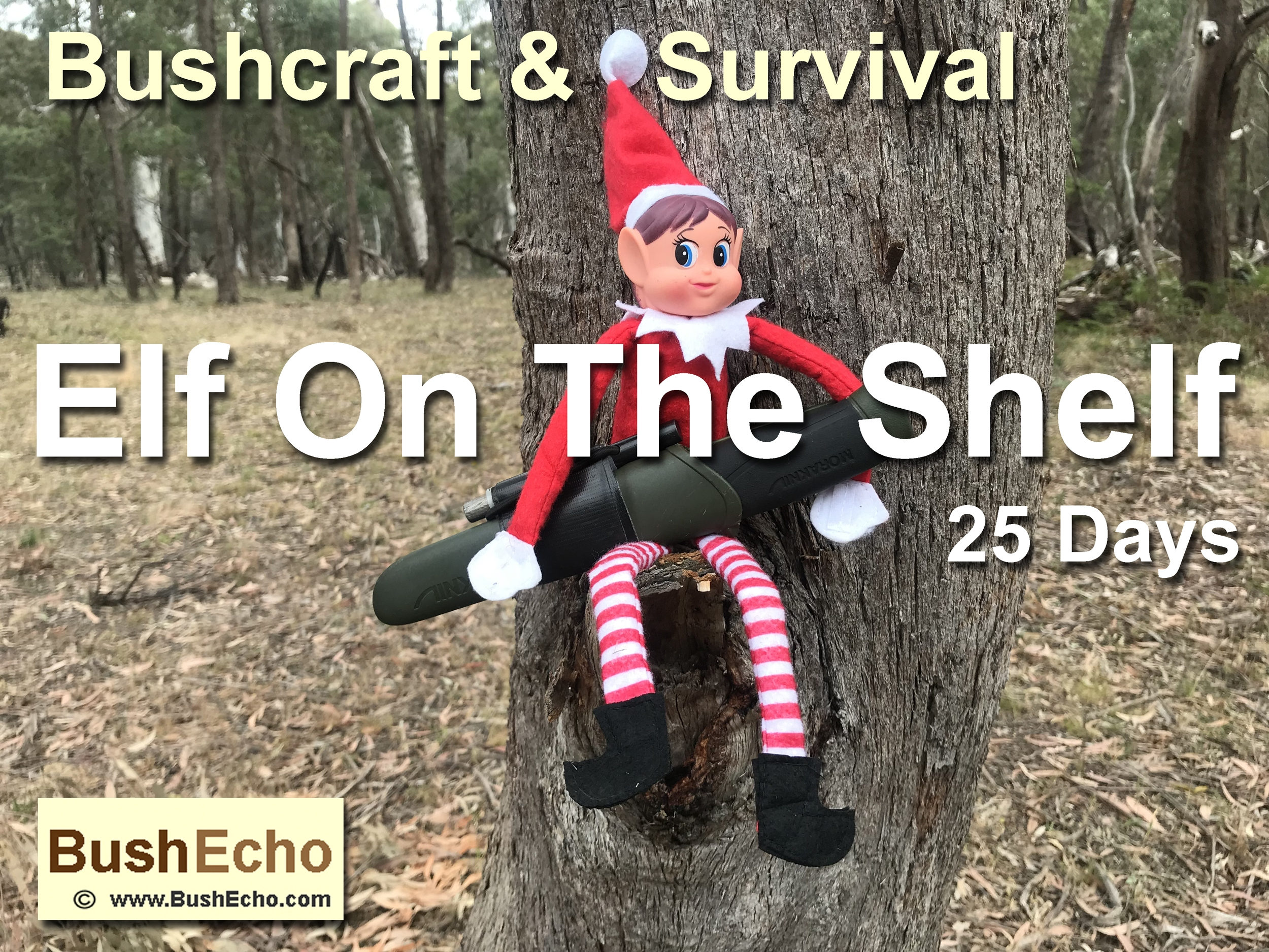 Elf On The Shelf Bushcraft & Survival