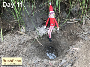 Elf on the Shelf digging for water survival