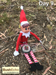 Elf on the Shelf with compass